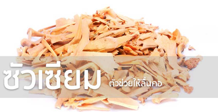 You are currently viewing ซัวเซียม ตัวช่วยให้ลื่นคอ